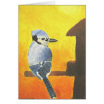 Blue Jay Sunset Blank Note Card