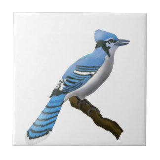 Blue Jay Ceramic Tiles