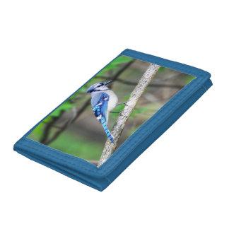 Blue Jay Trifold Nylon Wallet