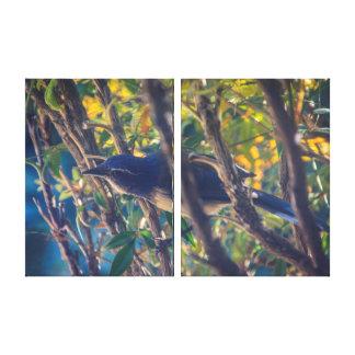 Blue Jay Triptych Wall Art Canvas Print