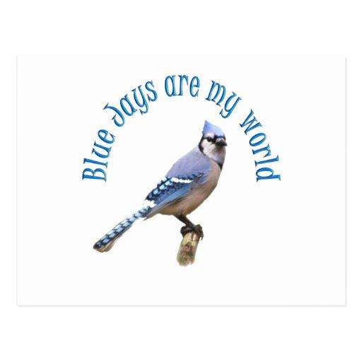 Blue Jays are my World Postcard