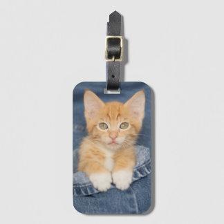 Blue Jean Baby Orange Kitten Bag Tag