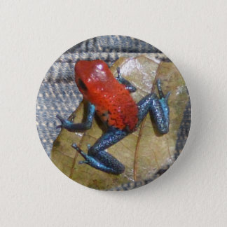 Blue Jeans Frog Button