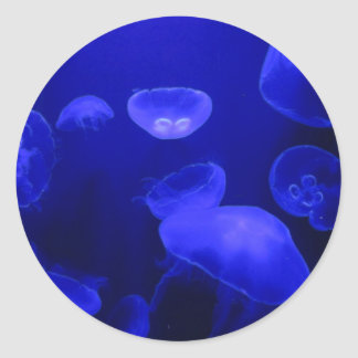 blue Jelly fish Classic Round Sticker