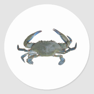 "Blue ""Jimmy"" Crab Classic Round Sticker"