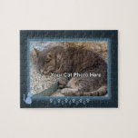 Blue Kitty Photo Puzzle
