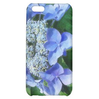 Blue Lace Cap Hydrangea Let's Dance Starlight iPhone 5C Cases