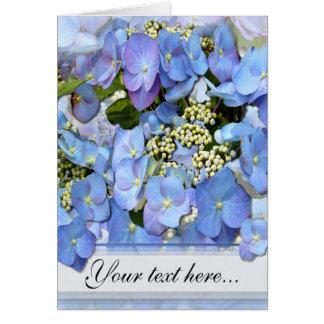 Blue Lacecap Hydrangeas Card