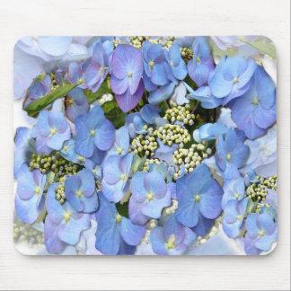 Blue Lacecap Hydrangeas Mouse Pad