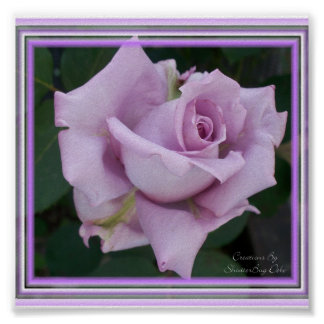 Blue Lady Rose Print