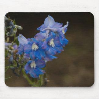 Blue Larkspur | Blauer Rittersporn Mouse Pad