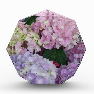 Blue Lavender Hydrangeas Awards