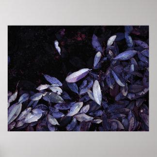 """""""Blue Leaf Shore"""" JTG Art Poster"""