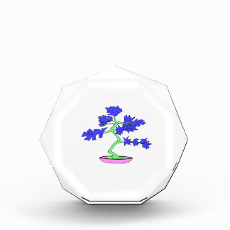 blue leaved green trunked bonsai tree graphic.png award