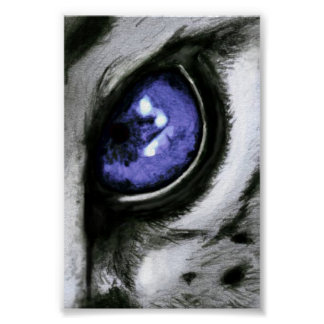 Blue Leopard Eye Poster