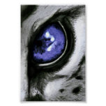 Blue Leopard Eye Print