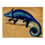 Blue Lizard Postcard