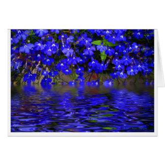 Blue Lobelia Card