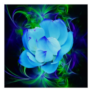 Blue lotus flower and its meaning poster