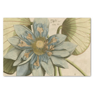 "Blue Lotus Flower on Tan Background with Writing 10"" X 15"" Tissue Paper"