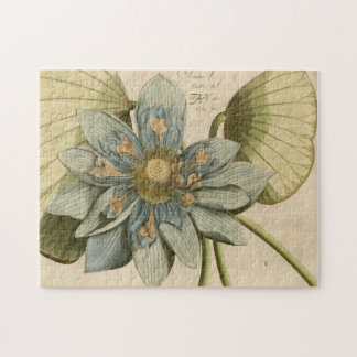 Blue Lotus Flower on Tan Background with Writing Puzzles