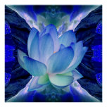 Blue lotus flower posters