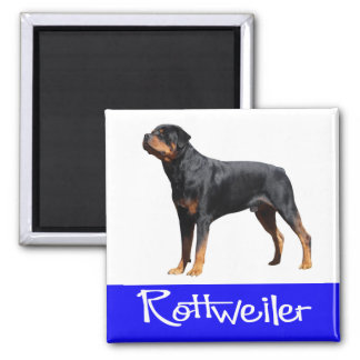 Blue Love Rottweiler Brown And Black Puppy Dog Magnet