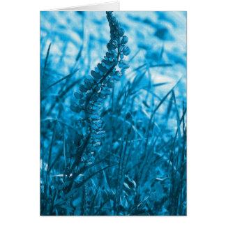 Blue lupin Card2 Card