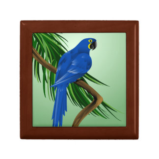 Blue Macaw Jewelry Box