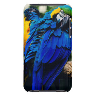 Blue Macaw Parrot, Exotic Tropical Bird Barely There iPod Cover