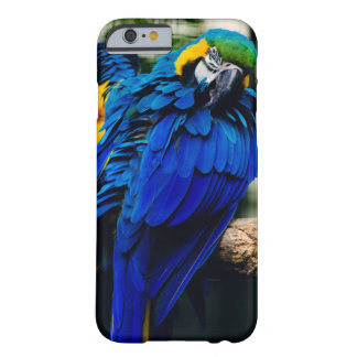 Blue Macaw Parrot, Exotic Tropical Bird Barely There iPhone 6 Case