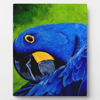 Blue Macaw Plaque