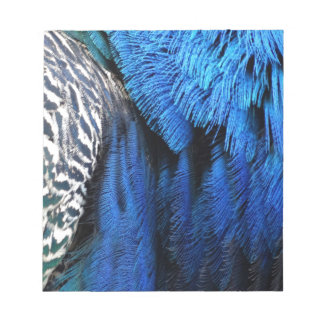 Blue Magical Peafowl Notepad