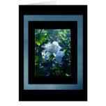 Blue Magnolia Easter Card