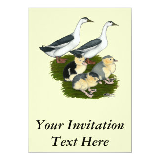 Blue Magpie Duck Family Card