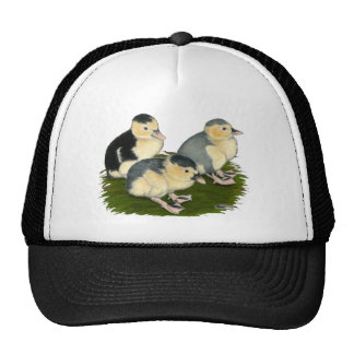 Blue Magpie Ducklings Mesh Hats