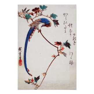 Blue Magpie on Maple Branch by Hiroshige Poster