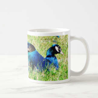 Blue Male Peacock Coffee Mug