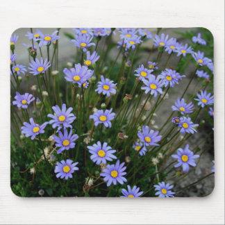 Blue Marguerite Flowers Mousepad