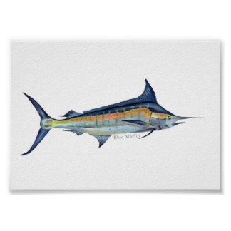 Blue Marlin poster