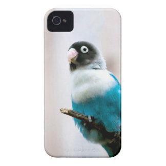 Blue Masked Lovebird iPhone 4 Case