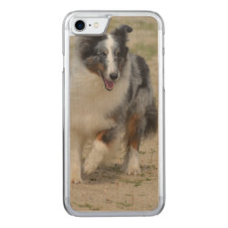 Carved Apple iPhone 7 Wood Case with Australian Shepherd Phone Cases design