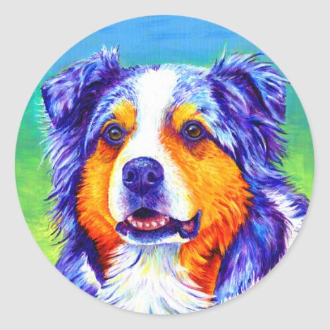 Blue Merle Australian Shepherd Dog Stickers