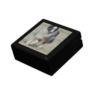 Blue Merle Australian Shepherd Jewelry Box