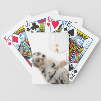 Blue Merle Australian Shepherd puppy Bicycle Playing Cards