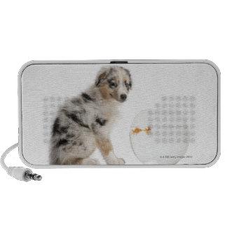 Blue Merle Australian Shepherd puppy looking Notebook Speaker