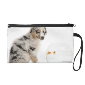 Blue Merle Australian Shepherd puppy looking Wristlet Purse