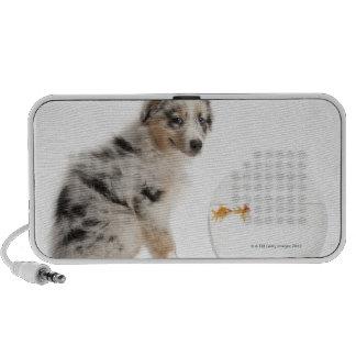 Blue Merle Australian Shepherd puppy Notebook Speakers
