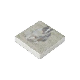 Blue Merle Australian Shepherd Stone Magnet
