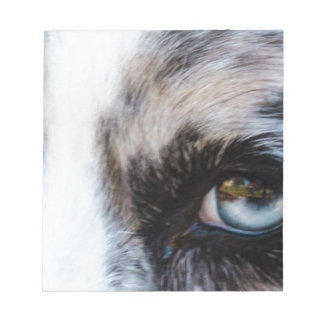 Blue Merle Dog Note Pads
